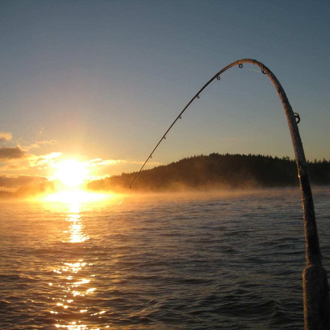 fishing-n
